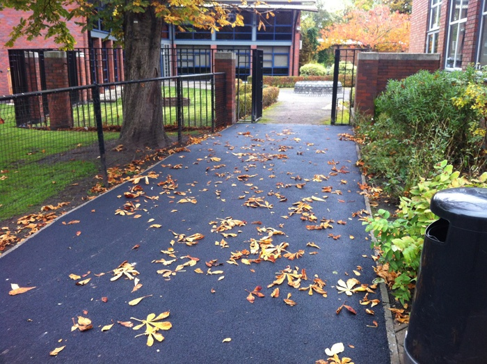 tarmac footpath with leaves on top